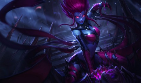 Discussions sur Evelynn avec Meddler